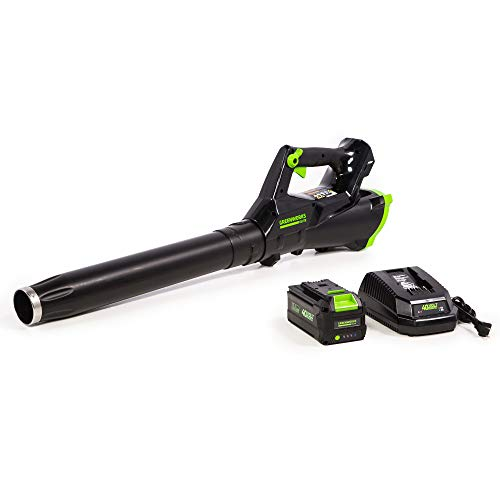 Greenworks 40V Brushless Axial Leaf Blower