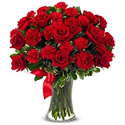From You Flowers - Red Roses + Red Carnations - Mixed Bouquet (Free Vase Included) for Valentine's Day