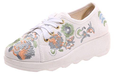 AvaCostume Canvas Embroidery Slip Sole Travel Walking Sneaker Beige 5scXFaUc