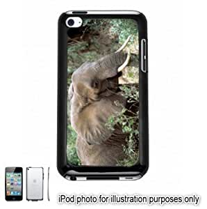 African Elephant Photo Apple iPod 4 Touch Hard Case Cover Shell Black 4th Generation