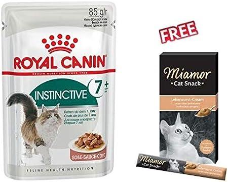 feline gravy renal diet wet food