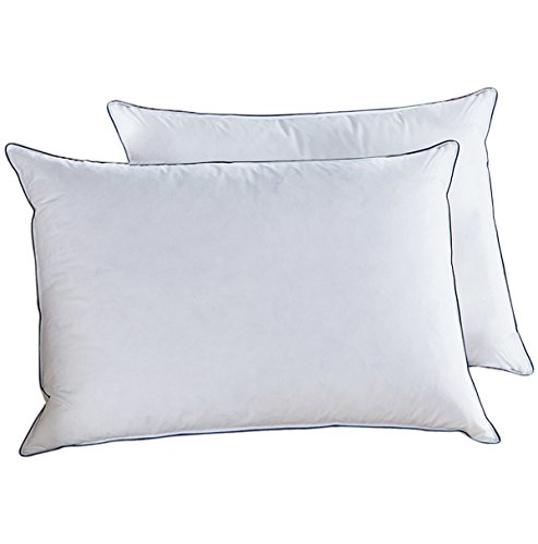Doriness Goose Down Pillows for Sleeping (Set of 2,Queen Soft), White Goose Down Feather Pillow,Hypoallergenic Premium 100% Cotton Fabric Soft with Blue Piping