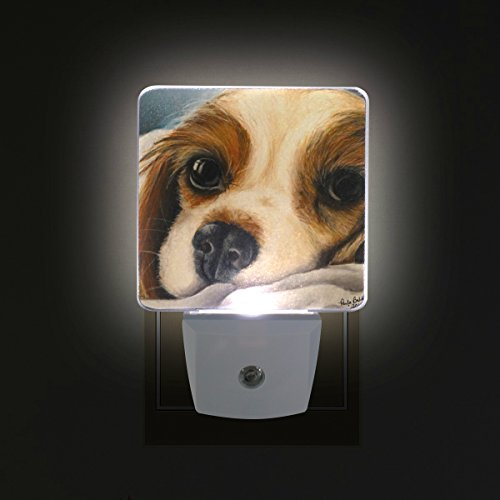 DEYYA Cavalier King Charles Spaniel Dog Plug in LED Night Light, Night Auto Sensor Smart Lighting Dusk to Dawn Decorative Night for Bedroom Bathroom Kitchen Hallway Baby's Room,US Plug,2 Pack