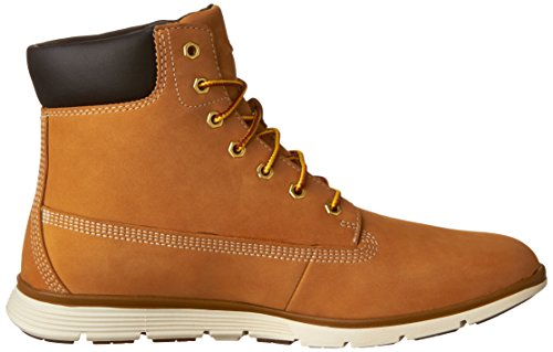 Timberland Wheat Fashion 6in Women's Sneakers Killington qrC7pBq