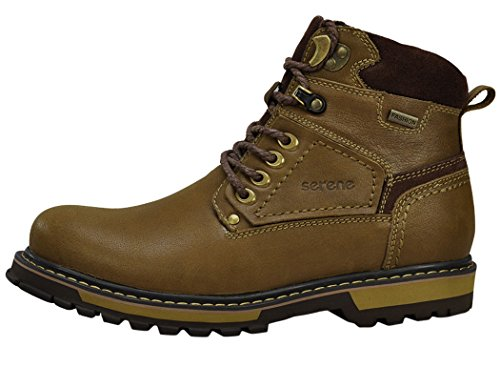 Serene Mens Lace-up Sneaker High Shoes (10 D(M)US, Tan)