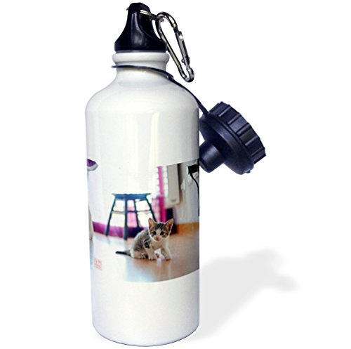 """3dRose wb_107925_1 """"Young woman hugging and loving her dogs, a Spanish Greyhound or galgo and mixed breed brown dog"""" Sports Water Bottle, 21 oz, White"""