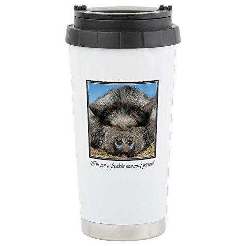miniature pot belly pigs - 6