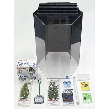 SeaClear 20 gal Hexagon Acrylic Aquarium Junior Executive Kit, 15 by 15 by 24'', Black by SeaClear