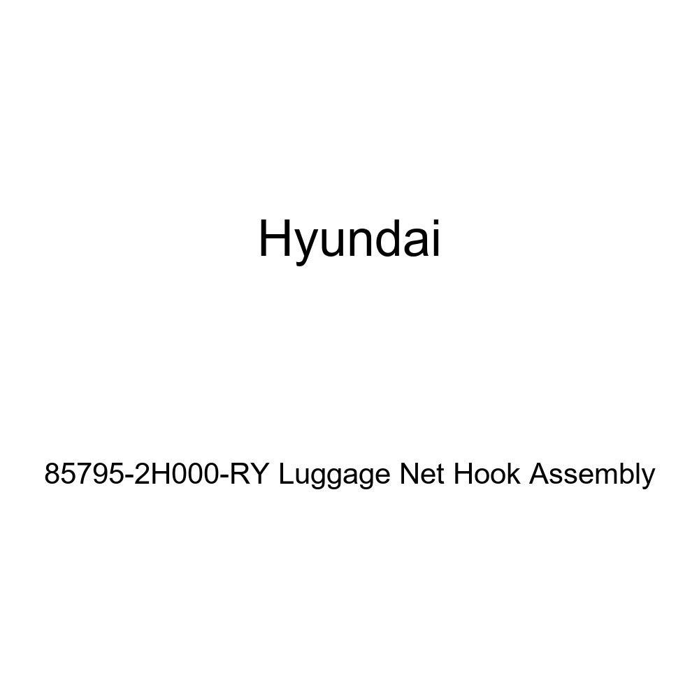 HYUNDAI Genuine 85795-2H000-RY Luggage Net Hook Assembly