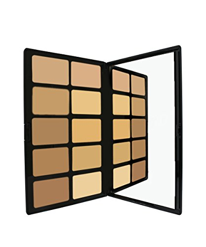 Cream to Powder Foundation Palette by Sacha Cosmetics, Best Pro Natural Matte Makeup Kit for Flawless Finish, Medium to Full Coverage, Normal to Oily Skin, Light to Medium (Best Cream To Powder Foundation For Oily Skin)