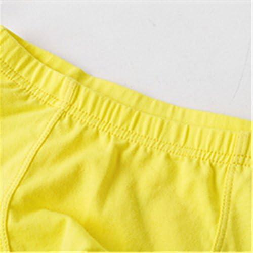 LittleSpringベビー ボーイズ 肌着 男の子 下着 ショーツ 男児用 ベビーパンツ 快適 かわいい ブリーフ 四色展開