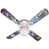 Ceiling Fan Designers Ceiling Fan, Radical Skateboards, 42