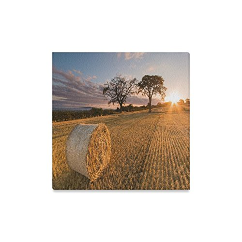 Canvas Print Bales Hay Sunny Days Modern Wall Art for Home Room Office Decoration (16x16 inch)]()