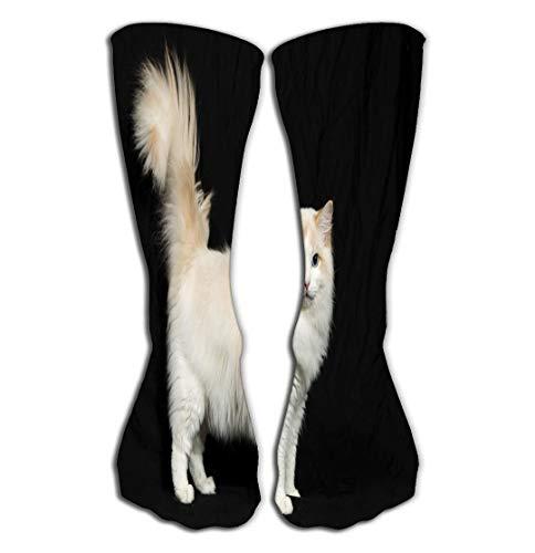 Xunulyn Outdoor Sports Men Women High Socks Stocking Beautiful Pussycat Ragdoll Baby cat Tile Length 19.7