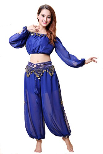 ZLTdream Belly Dance Chiffon Long Sleeves Top