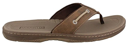 Men's Sperry, Havasu Thong Sandal BROWN 11 M