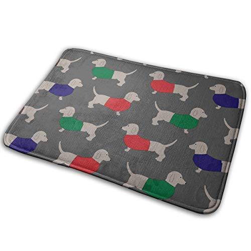 Yiyingzhang Non-Slip Bathroom Rug Door Mat Dachshund Dog Wallpaper Pattern Easy to Clean Doormats