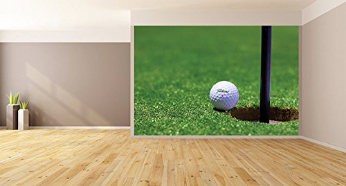 "Golf Greens REMOVABLE WALLPAPER, WALL DECOR, CUSTOM DESIGN, WALL MURAL (96""x96"")"