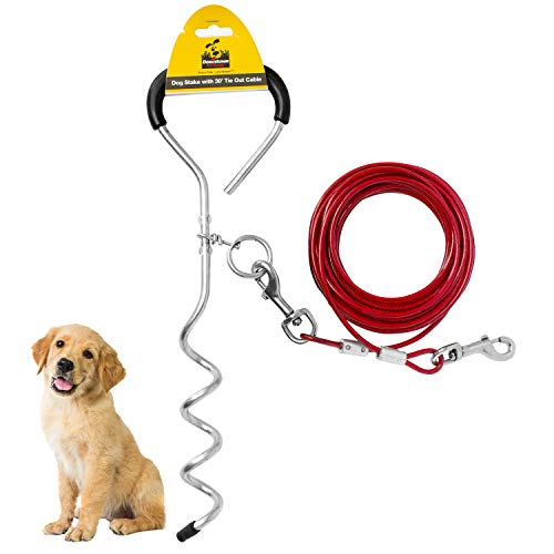 Downtown Pet Supply New Premium Steel Spiral Tie Out Stake with (10 Foot)