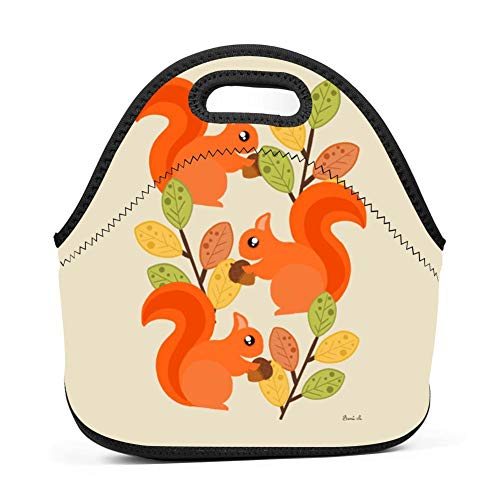 Three Busy Squirrels in A Tree Lunch Bag Insulated Bento Tote Bag Picnic Bag with Zipper for Children Adult