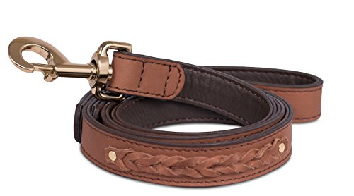 Internet's Best Brown Leather Dog Leash with Braiding | 4 Feet x 1 Inch | Leather | Pet Accessories Leather Colored Dog Collar