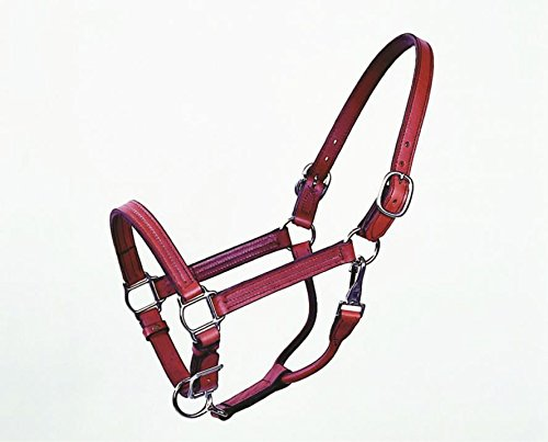 DavesPestDefense TRACK HALTER - COBB - BROWN by DavesPestDefense