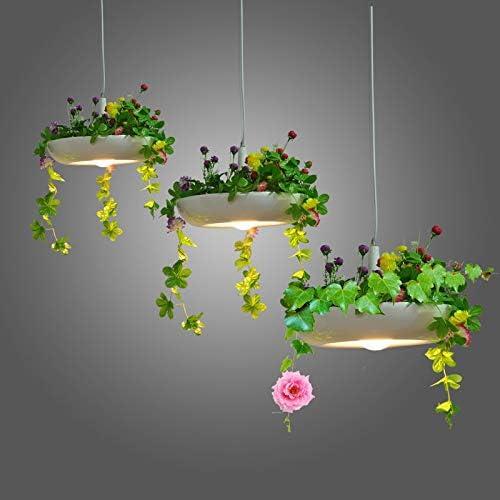 Iluminacion Colgante Arana Lampara Led Jardines Colgantes De