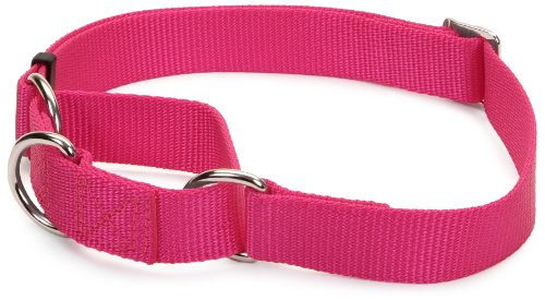 Coastal Adjustable No Slip Martingale Collar, 1