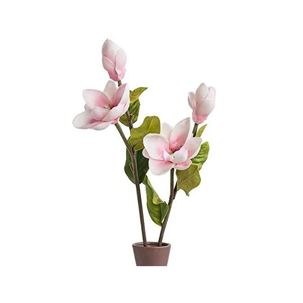 Floral Kingdom 25″ Real Touch Artificial Magnolia Flowers for Foral Arrangements, Gift Wrapping, Bouquets, Home/Office Decor (Pack of 2) (Blush Pink)
