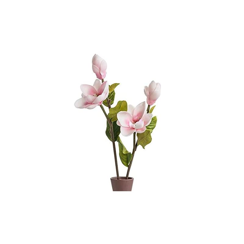 """silk flower arrangements floral kingdom 25"""" real touch artificial magnolia flowers for foral arrangements, gift wrapping, bouquets, home/office decor (pack of 2) (blush pink)"""
