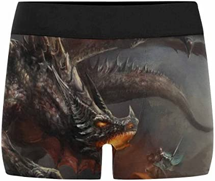 XS-3XL INTERESTPRINT Mens Boxer Briefs Underwear Fantasy Scene Knight Fighting Dragon