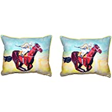 Betsy Drake Polyester Patio Furniture Pillows Betsy Drake Airborne Horse Extra Large Pillow 20 X 24 24 X 20 X 6 Inches Multicolored