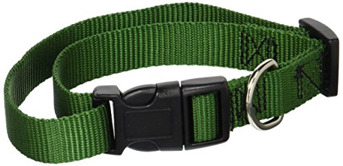 "Guardian Gear Nylon Adjustable Dog Collar with Plastic Buckles, Fits Necks 14"" to 20"", Hunter Green"
