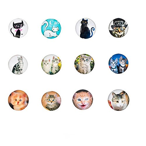 Mel Crouch Women Office Lanyard ID Badges Holder Necklaces Keychain with Snap Charms Clip Pendant (cat kitten)