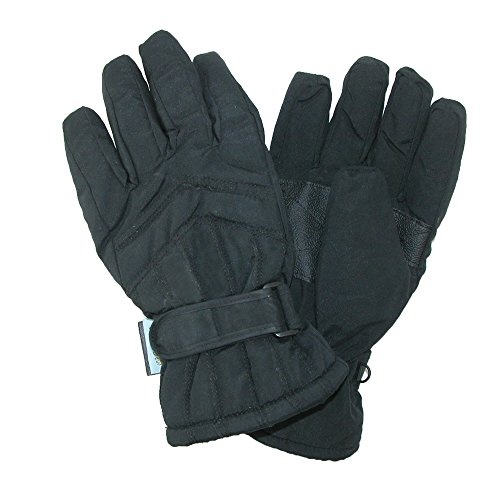 インタビュー抑圧する濃度CTMレディースシンサレート裏地防水スキー手袋