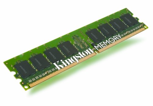 Kingston Technology 1 GB DIMM Memory 2 667 MHz (PC2 5300) 240-Pin DDR2 SDRAM Single (Not a kit) KTD-DM8400B/1G ()