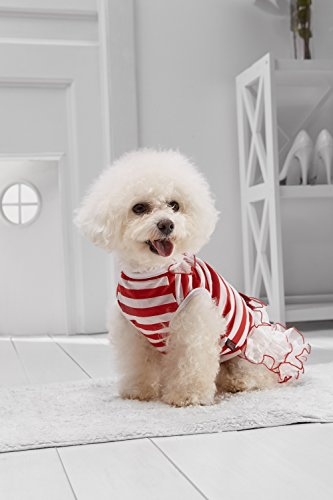 Small Dog Tutu Dress For Bichon Frise Pekingese Shih Tzu Jack Russell Lhasa Apso (Small Size, red, white)