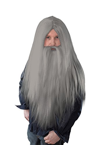 Grey Men's Long Wizard Wig & Beard