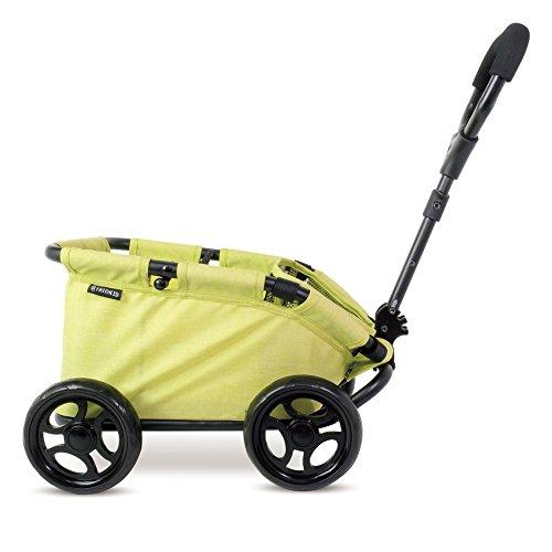 Celebrity Strollers - 9