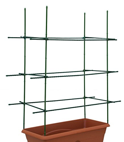 Garden Patch Box (Garden Patch The Bamboo Style Staking Kit)