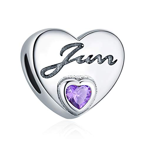 - June Birthstone Charm Purple Crystal Charm Beads Love Heart 925 Sterling Silver Charms for Bracelets, Birthday Gifts for Women Girls