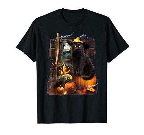 Black Cat Beauty Witch Pumpkin Happy Halloween (Witch Black Cat Pumpkin)