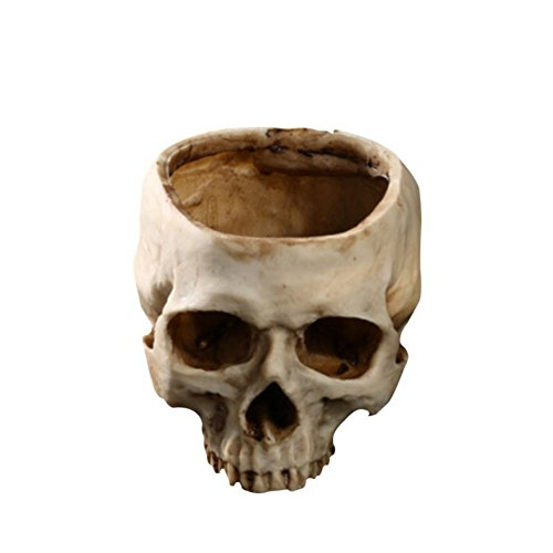 Hankyky Figurine Resin Human Skull Head Flower Pot Resin Decoration Halloween Antique Appliances Ashtray Planter Bed Box Container Replica Home Bar Decor ()