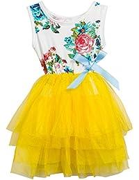 Little Girls Sleeveless Floral Princess Dress Tulle Tutu Sundress