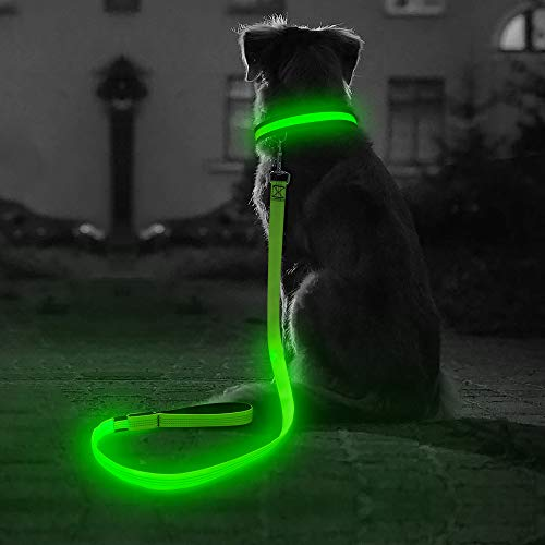 BSEEN Led Dog Safety Collar Leash, USB Rechargeable Flash Glow Dog Necklace Leash, Great Visibility&Improved Safety for Your Dogs (Leash-120CM, Green-2)