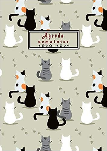 Agenda semainier 2020 2021: Calendrier A4 (21 x 29.7 cm) chats, de