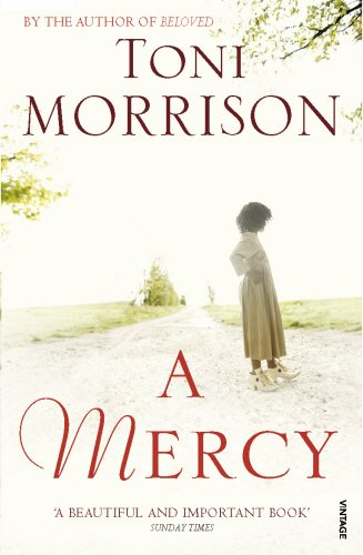 Download A Mercy ebook