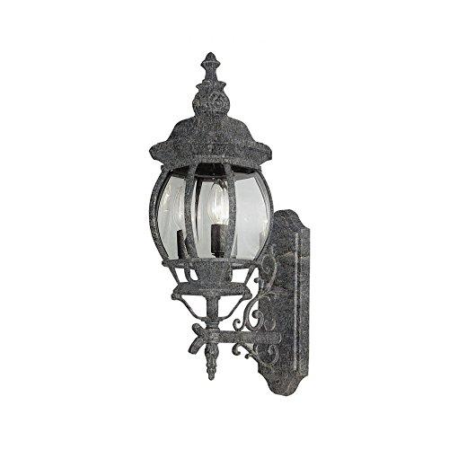 Transglobe Lighting 4051 SWI Outdoor Wall Light with Beveled Glass Shades, Swedish Iron Finished