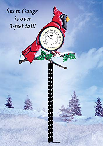 Collections Etc Holiday Cardinal Thermometer & Snow Gauge by Collections Etc