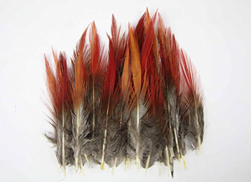 New Pretty Premium DIY 100PCS Pheasant Tail red tip Feathers 5-10cm/2-4 inch